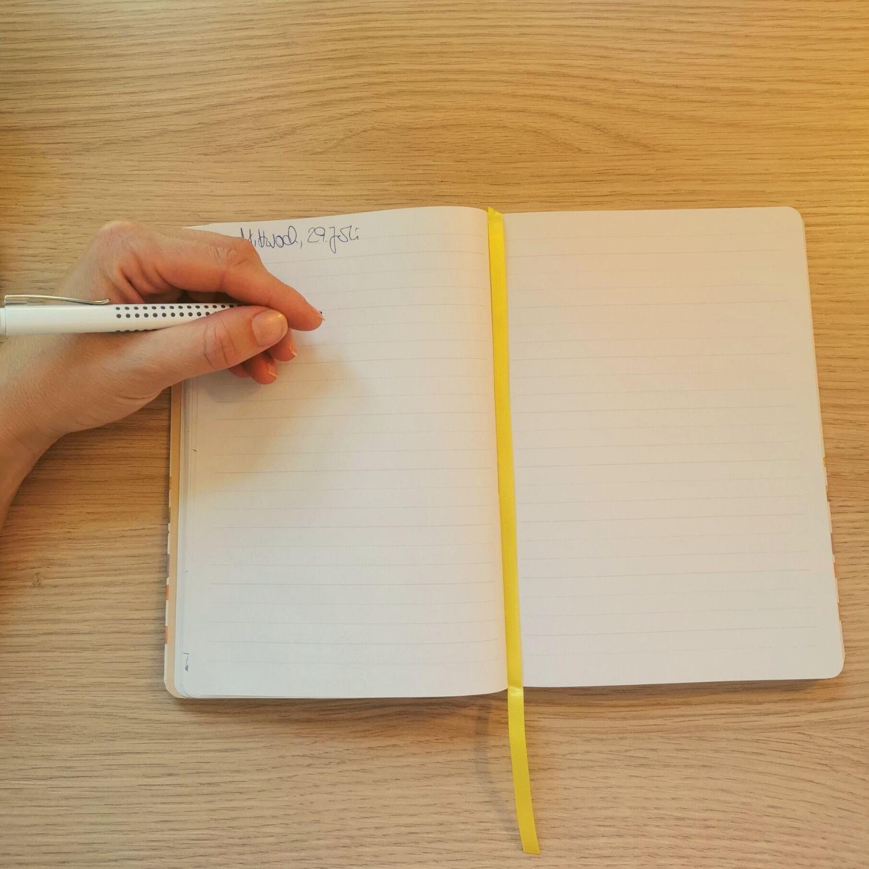 Ich schreibe in mein Tagebuch